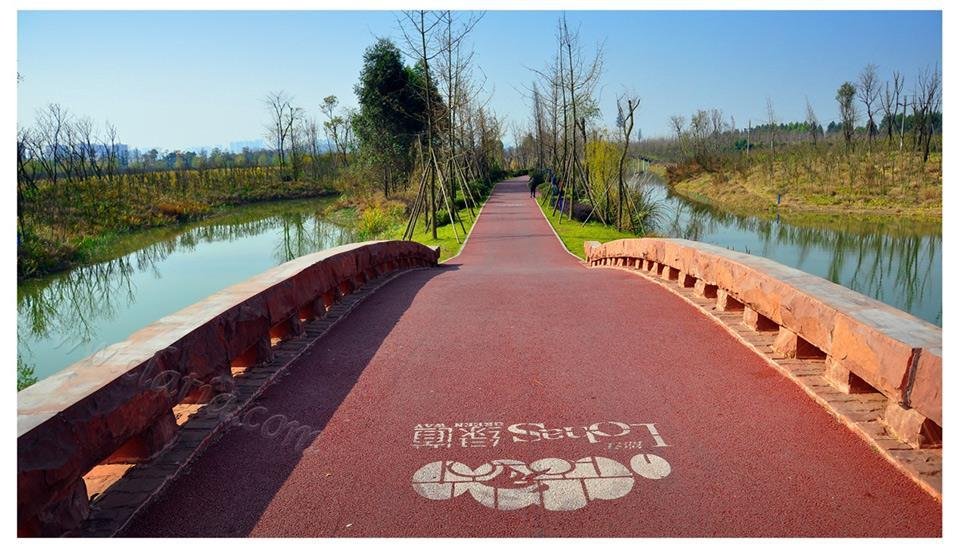 成都白鹭湾湿地2