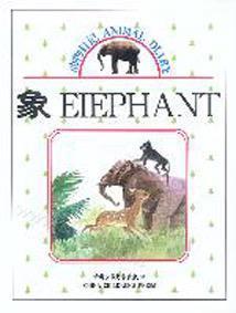 动物日记:象