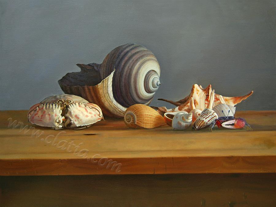 静静的海贝-油画