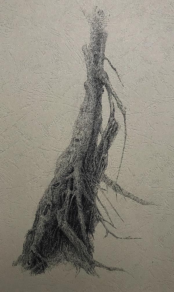 树干系列8-中性笔·皮纹纸