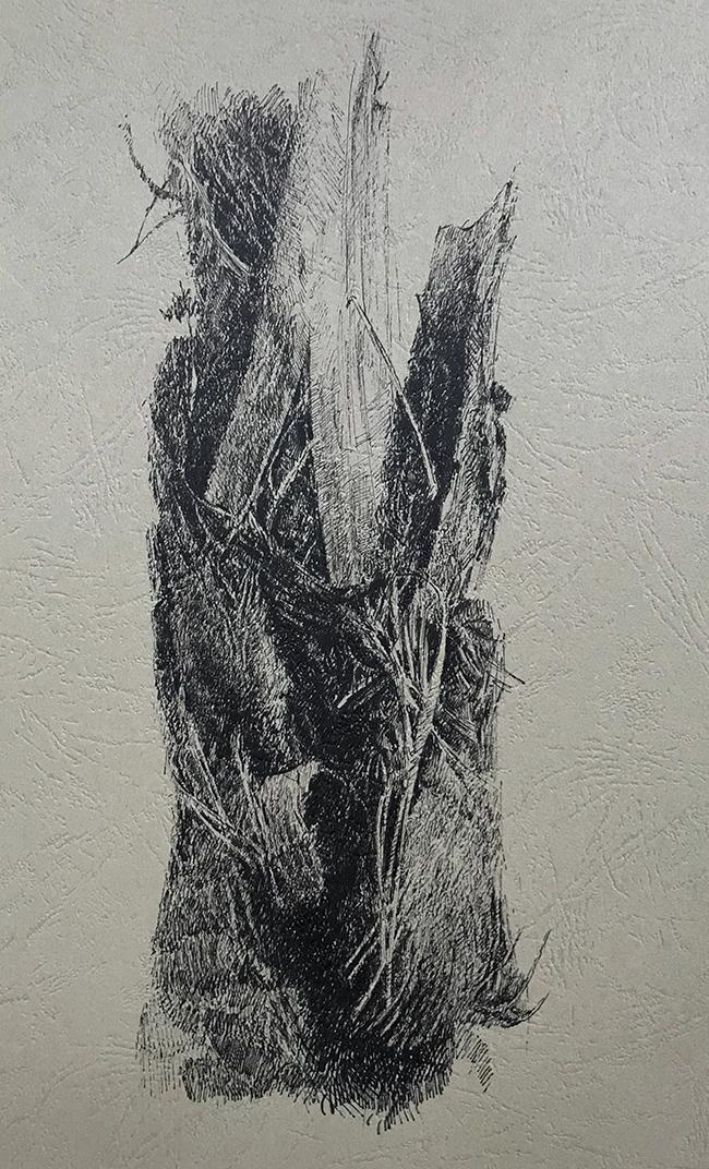 树干系列4-中性笔·皮纹纸