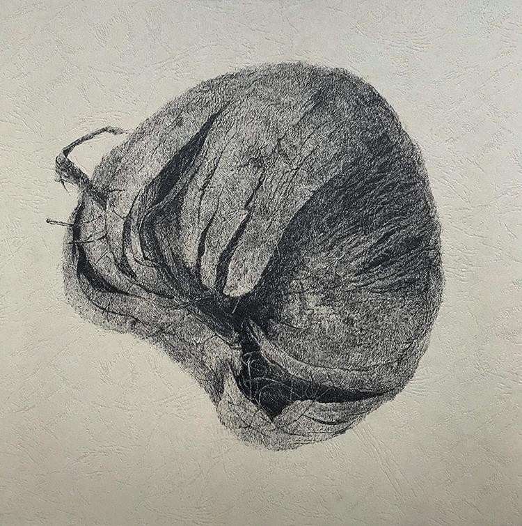 风化系列之:椰子2-中性笔·皮纹纸