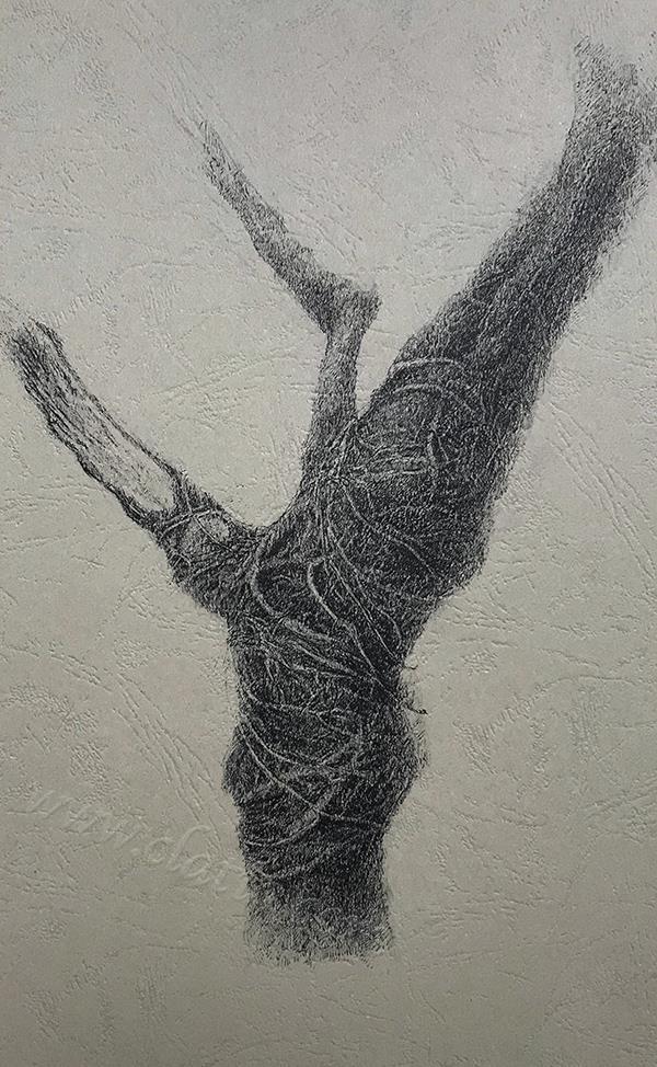 树干系列9-中性笔·皮纹纸