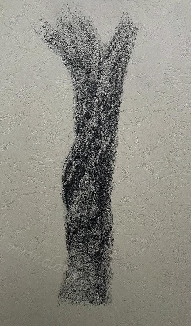 树干系列7-中性笔·皮纹纸