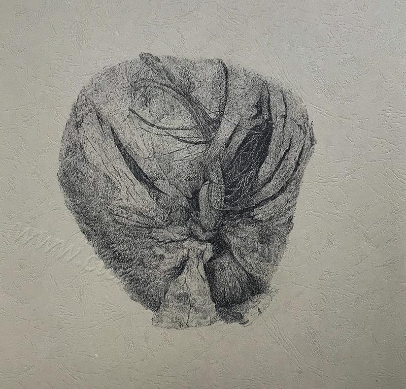 风化系列之:椰子1-中性笔·皮纹纸