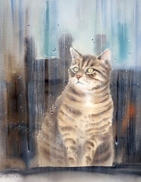 Rainy Cat