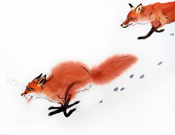 Foxes play