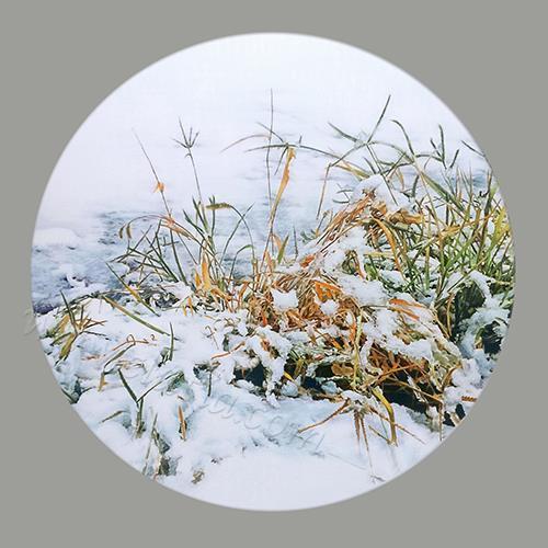 初雪系列 02