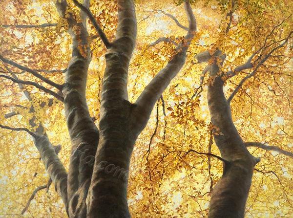 Autumn dome Distemper