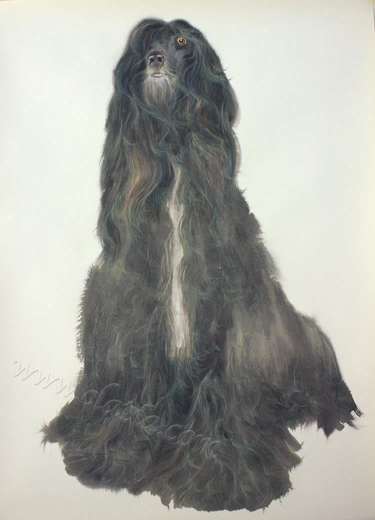 Salvador 90x60cm watercolor