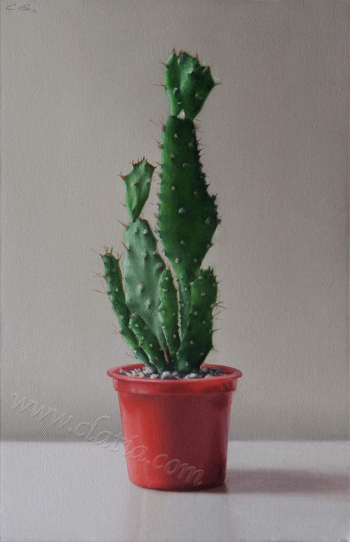 Cactus, oil on canvas