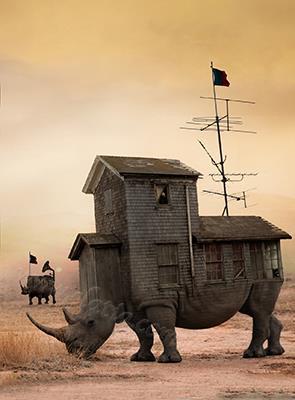 batch_Rhino desert 2018