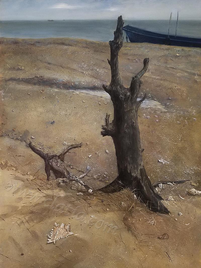 海边的枯木