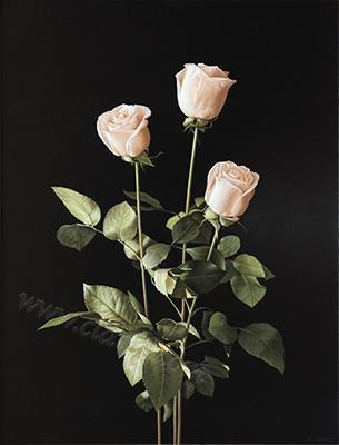Three roses, oil on canvas