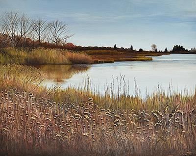 December Reeds at Bluff Point
