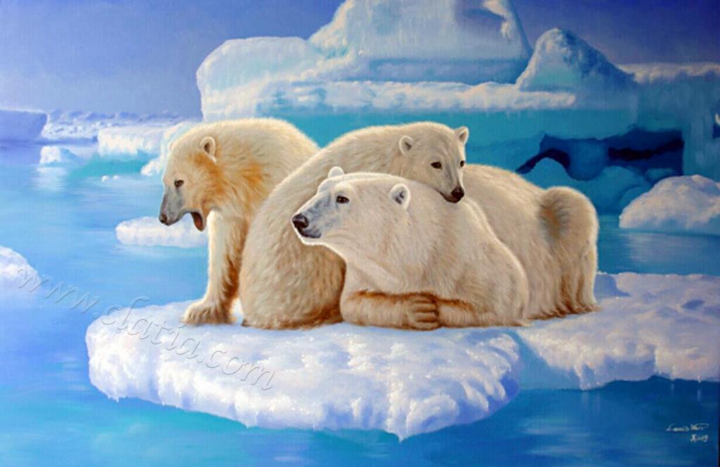 南北极冰川系列3
