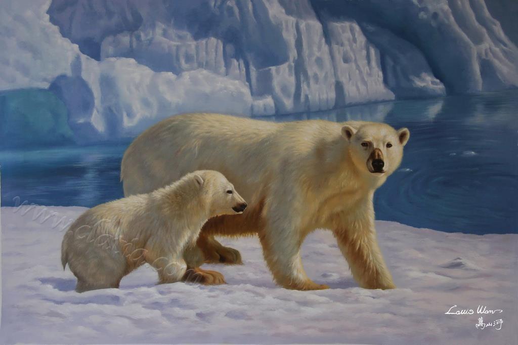 南北极冰川系列2