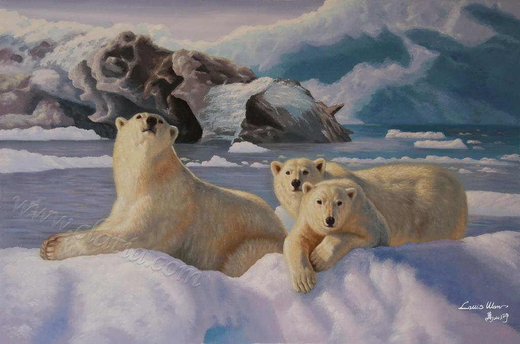 南北极冰川系列1